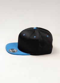 Team Sports Swingman Flat Peak Snapback Caps
